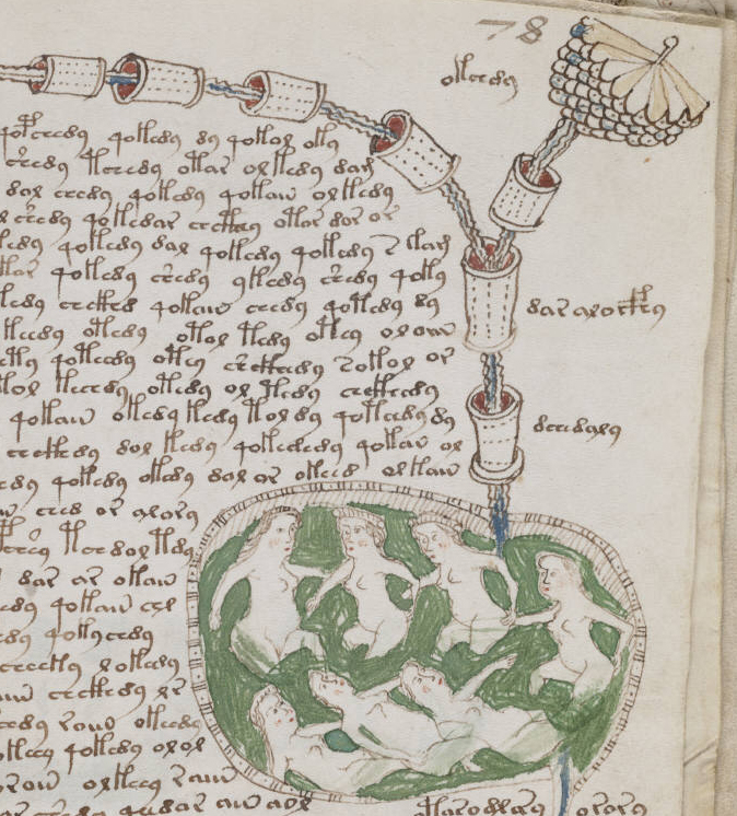 Voynich_manuscript_bathtub2_example_78r_cropped