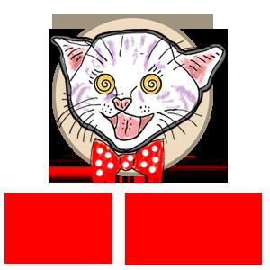 dada kitten
